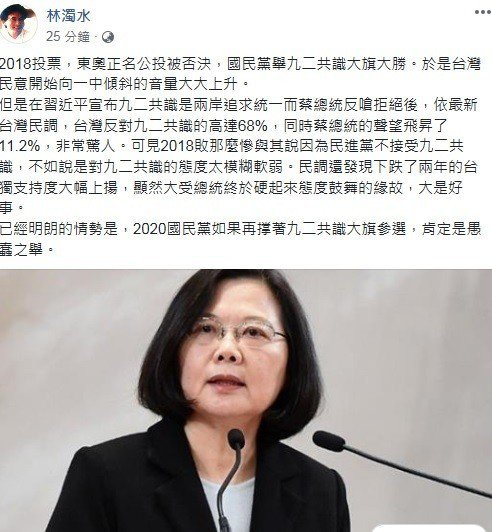 林濁水:2020國民黨若再撑九二共識大旗 肯定愚蠢之舉