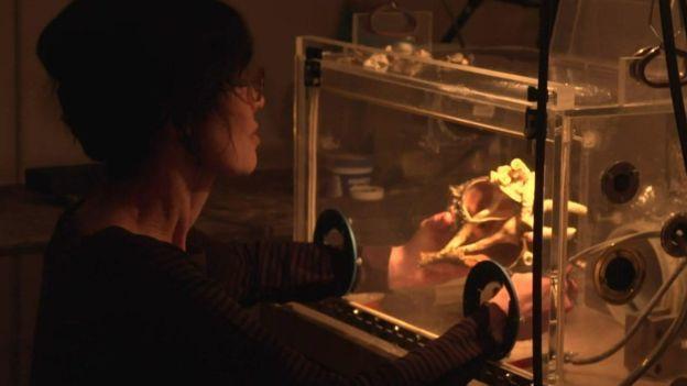 加拿大藝術家格恩瑟(Gillian Genser)。圖取自BBC