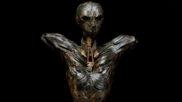 加拿大藝術家格恩瑟用貝殼創作「亞當」。圖取自BBC