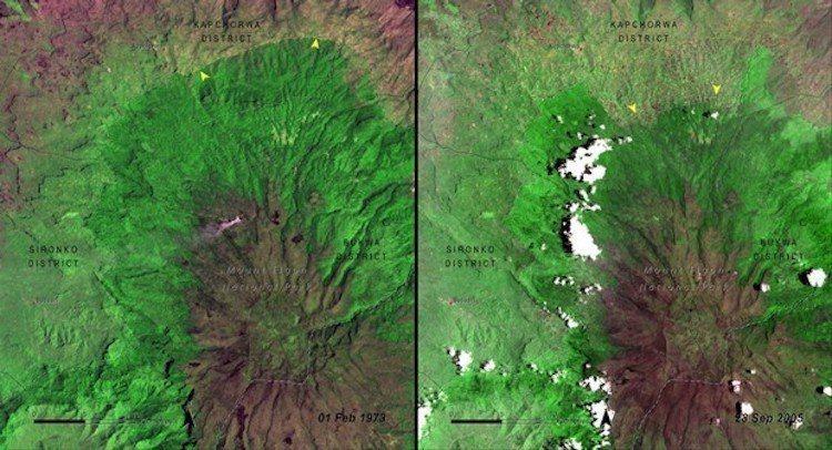 烏干達植被變化。圖/遠見提供