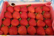 草莓農藥殘留爆多!用什麼水洗才能真正洗淨?
