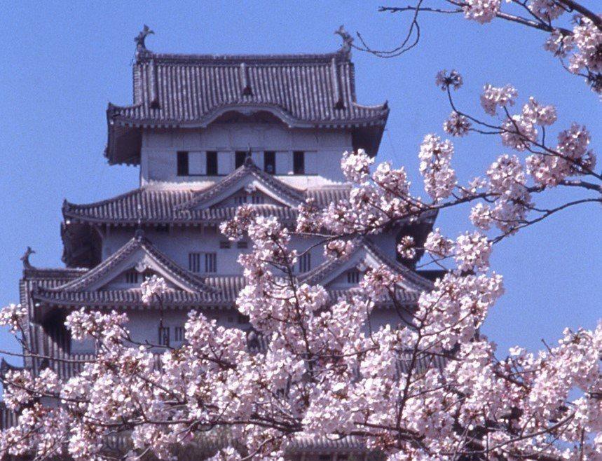 ▲日本櫻花百選推薦-姬路城。(圖/©JNTO)