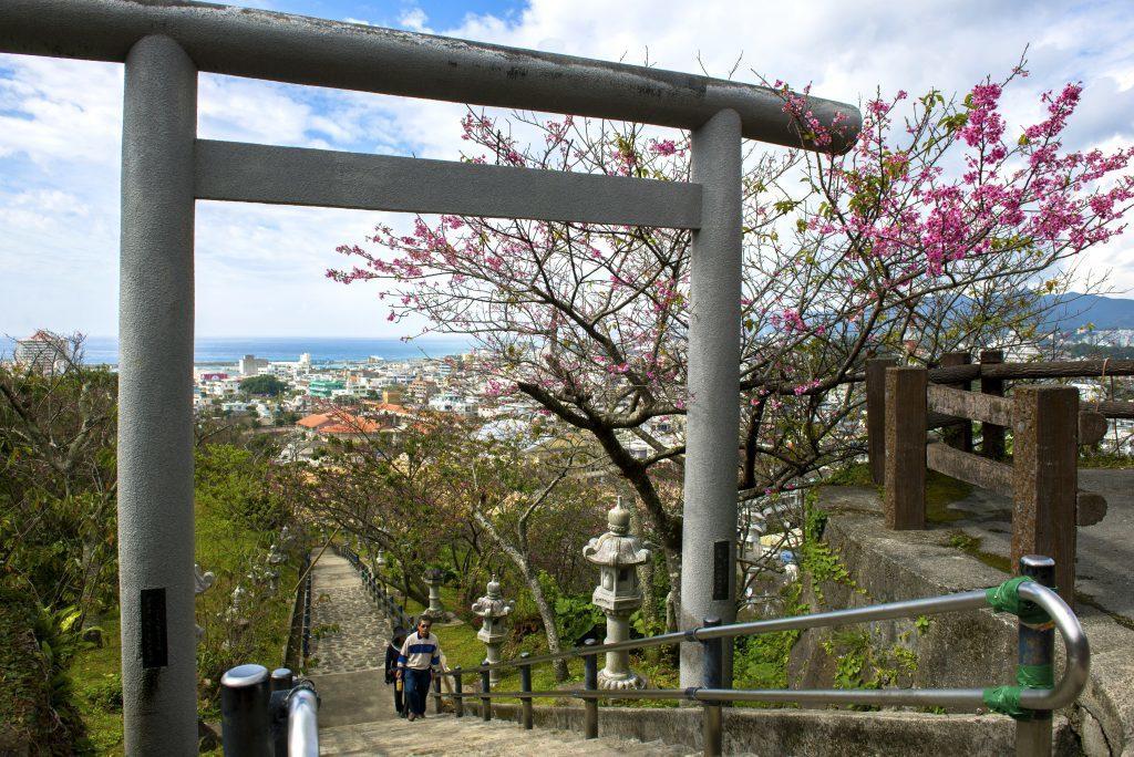 ▲沖繩名護城。(圖/© Okinawa Convention&Visitors ...