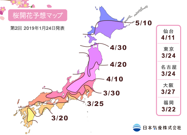 日本氣象株式會社最新的櫻花前線預測。圖/摘自官網