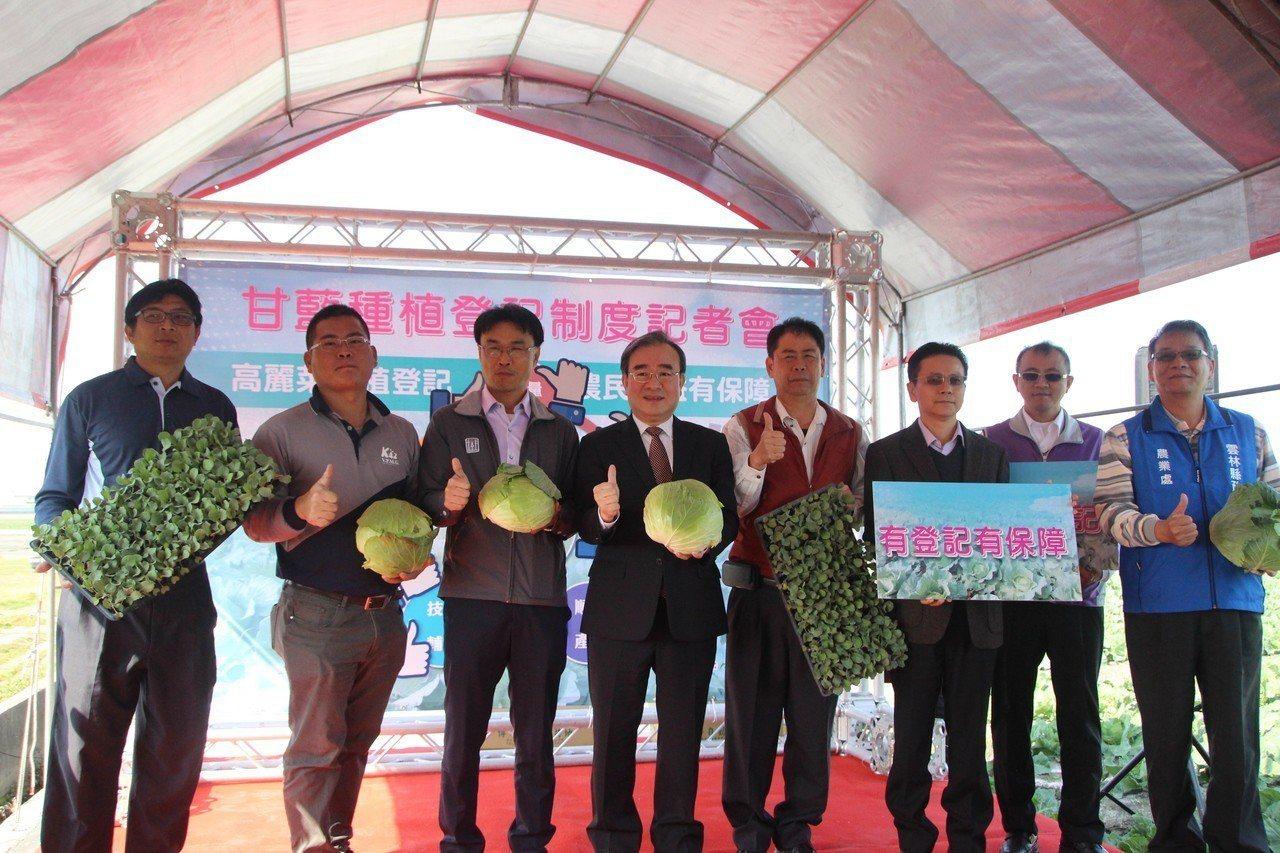 農委會啟動高義菜登記種植機制,希望有助農民收益。記者林敬家/攝影