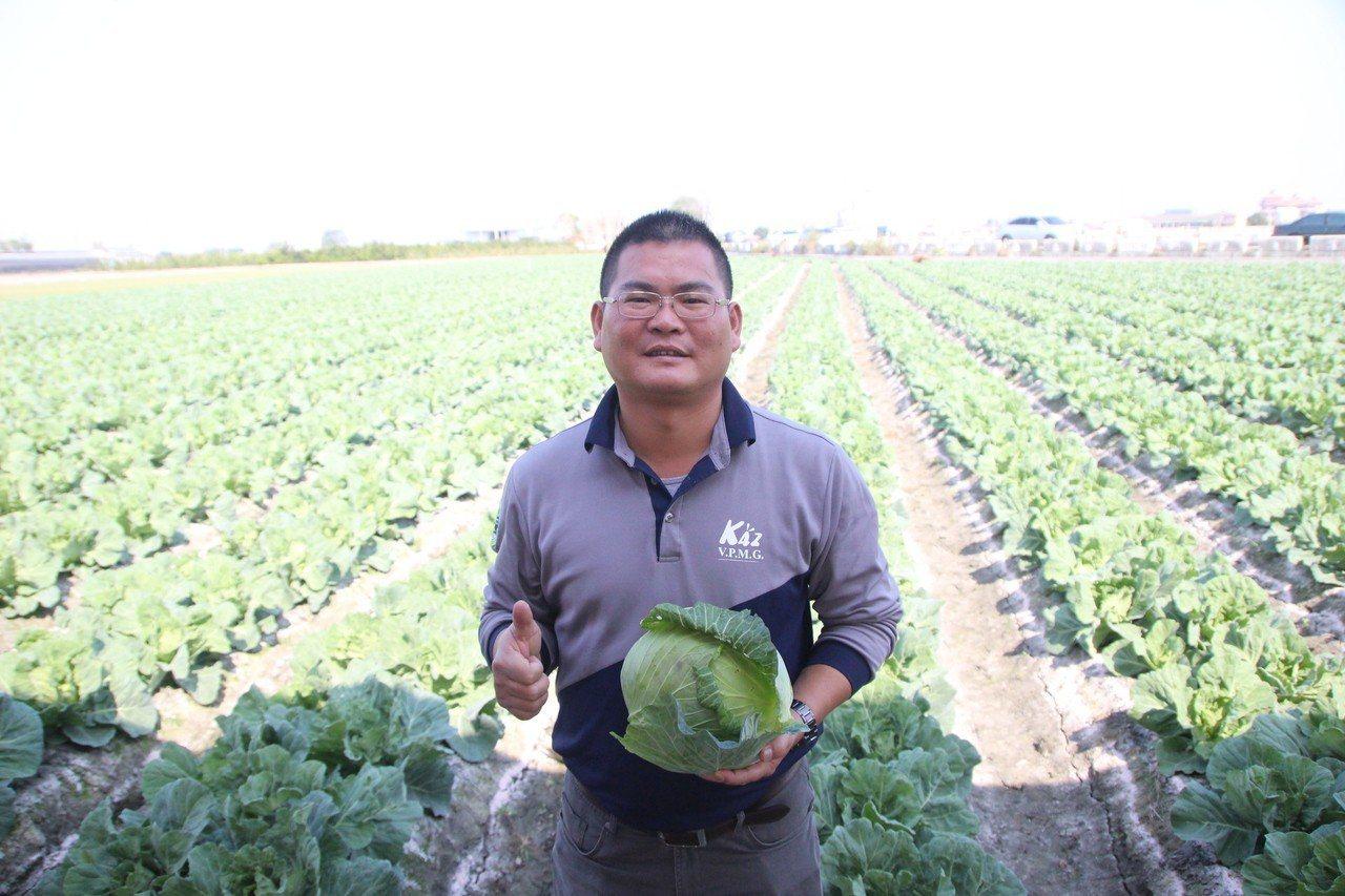 曾是神農獎得主的青農蔡宜修希望農民落實登記種植,讓產銷資訊更準確透明。記者林敬家...