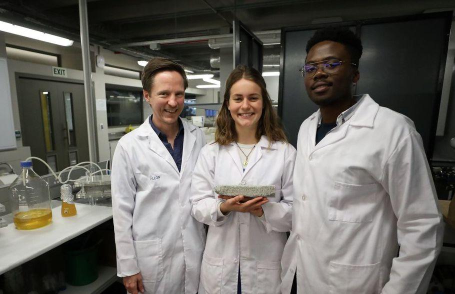 南非開普敦大學的科學家研發出尿素磚。 (路透)