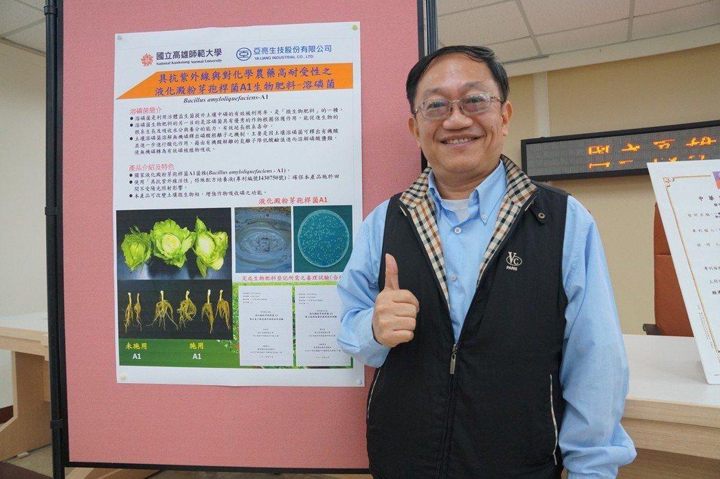 高師大研發團隊將此種液化澱粉芽孢桿菌進行田間試驗,除了有很好的溶磷效果促進植物生...