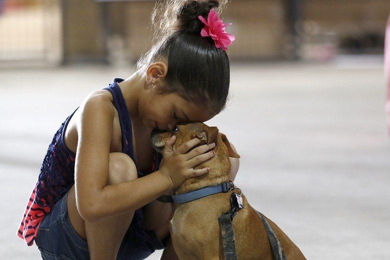 施虐者經常以虐待動物來勒索受虐者返回家中,形成暴力循環。示意圖。 圖/美聯社
