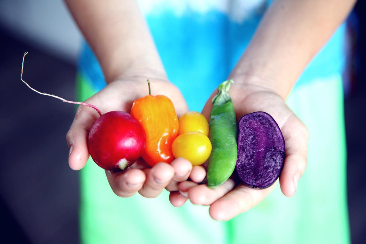 減肥期間,營養要均衡。圖/摘自pelexs