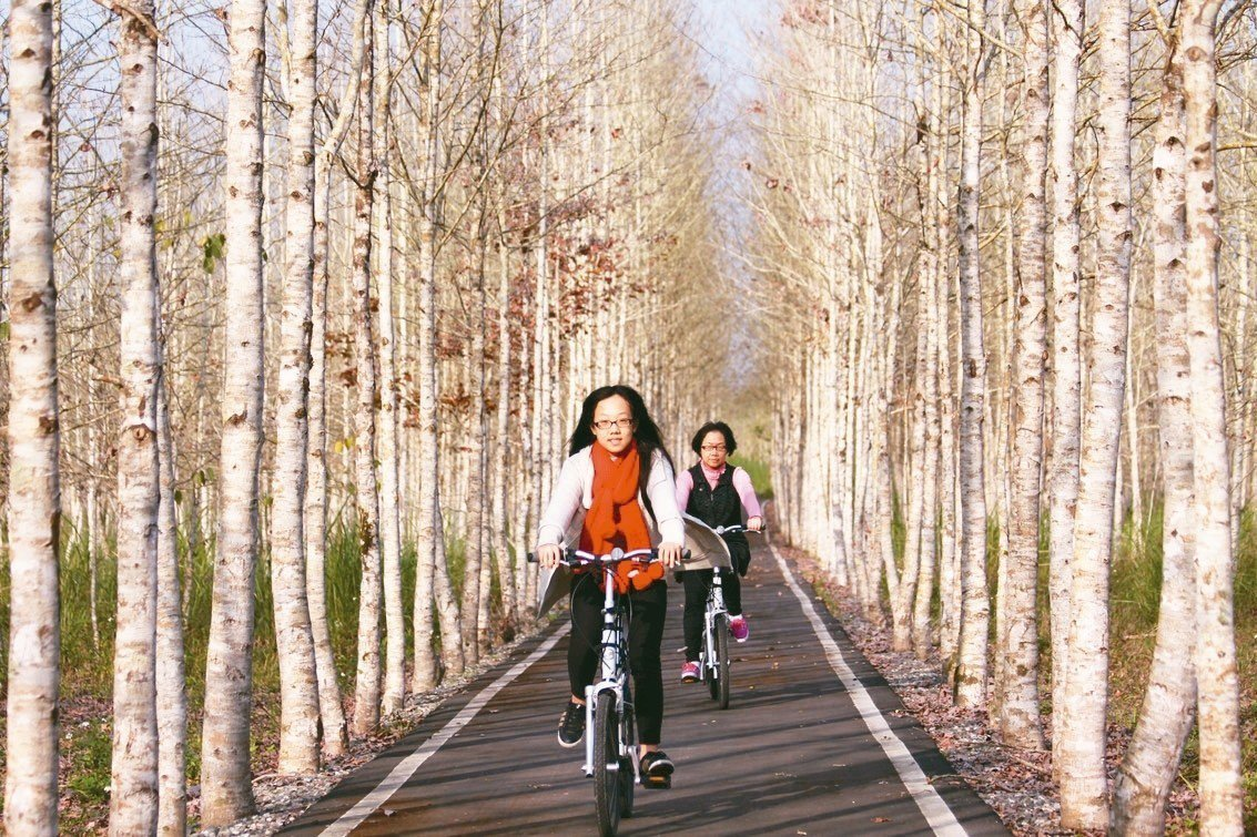 拜訪春天,不妨到花蓮大農大富林業園區跨上鐵馬用健康迎接新的一年。 花蓮林管處/提...
