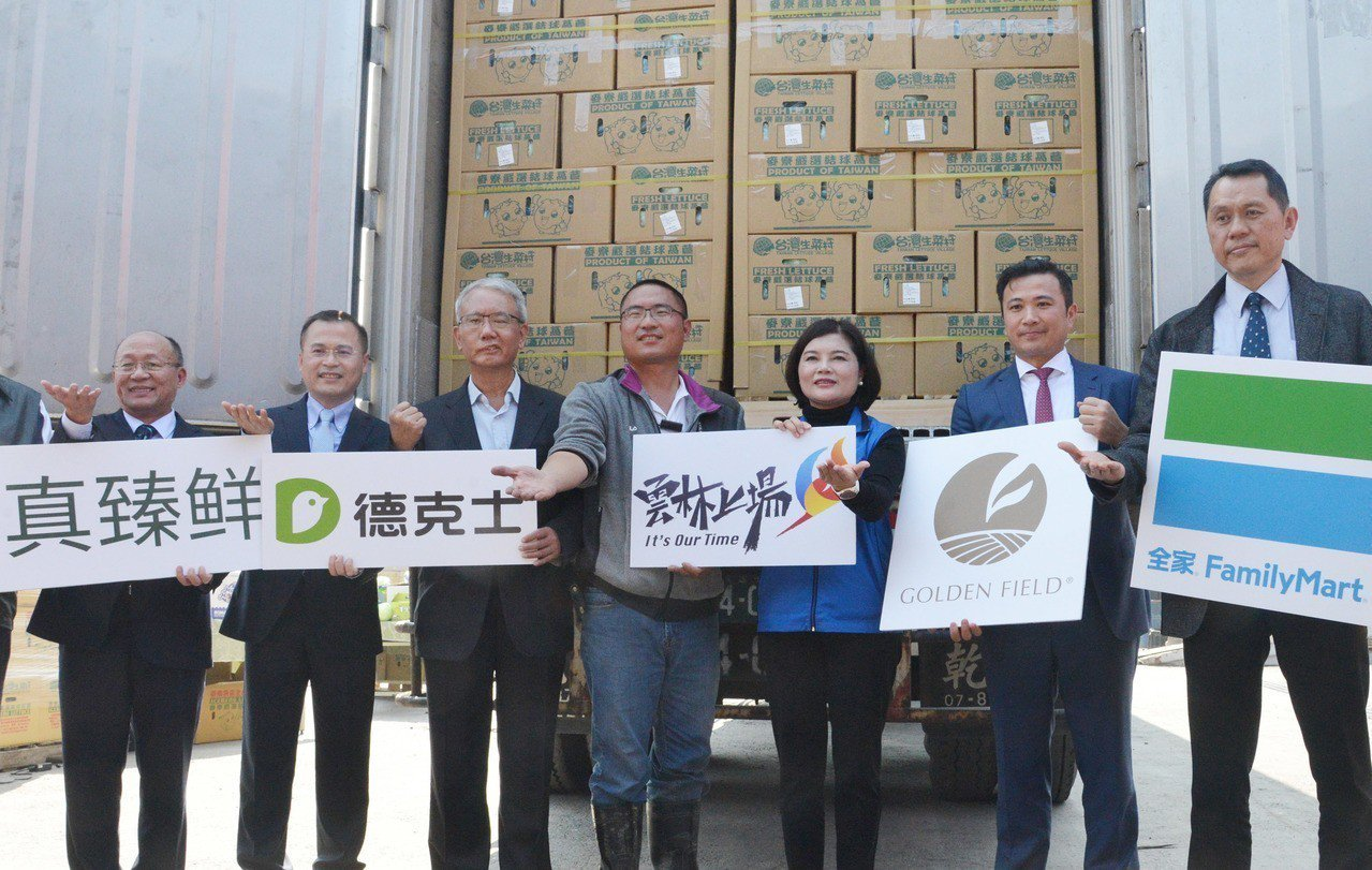 多家企業公司透過產地直採,將雲林麥寮美生菜送往中國大陸連鎖通路商門市銷售,雲林縣...