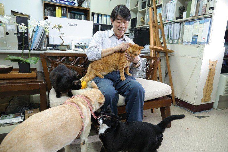 柯鴻圖充滿愛心,收留的流浪狗和貓和他感情深厚。(林格立攝)