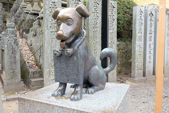 摸摸「金毗羅狗(こんぴら狗)」的頭可以帶來好運。