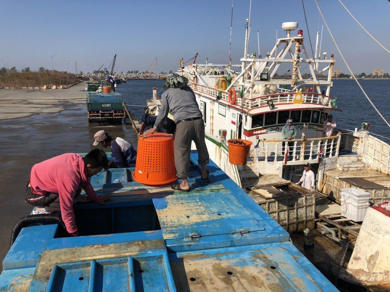 高雄市元月份漁產外銷總金額為新台幣2.7億元。圖/市府海洋局提供