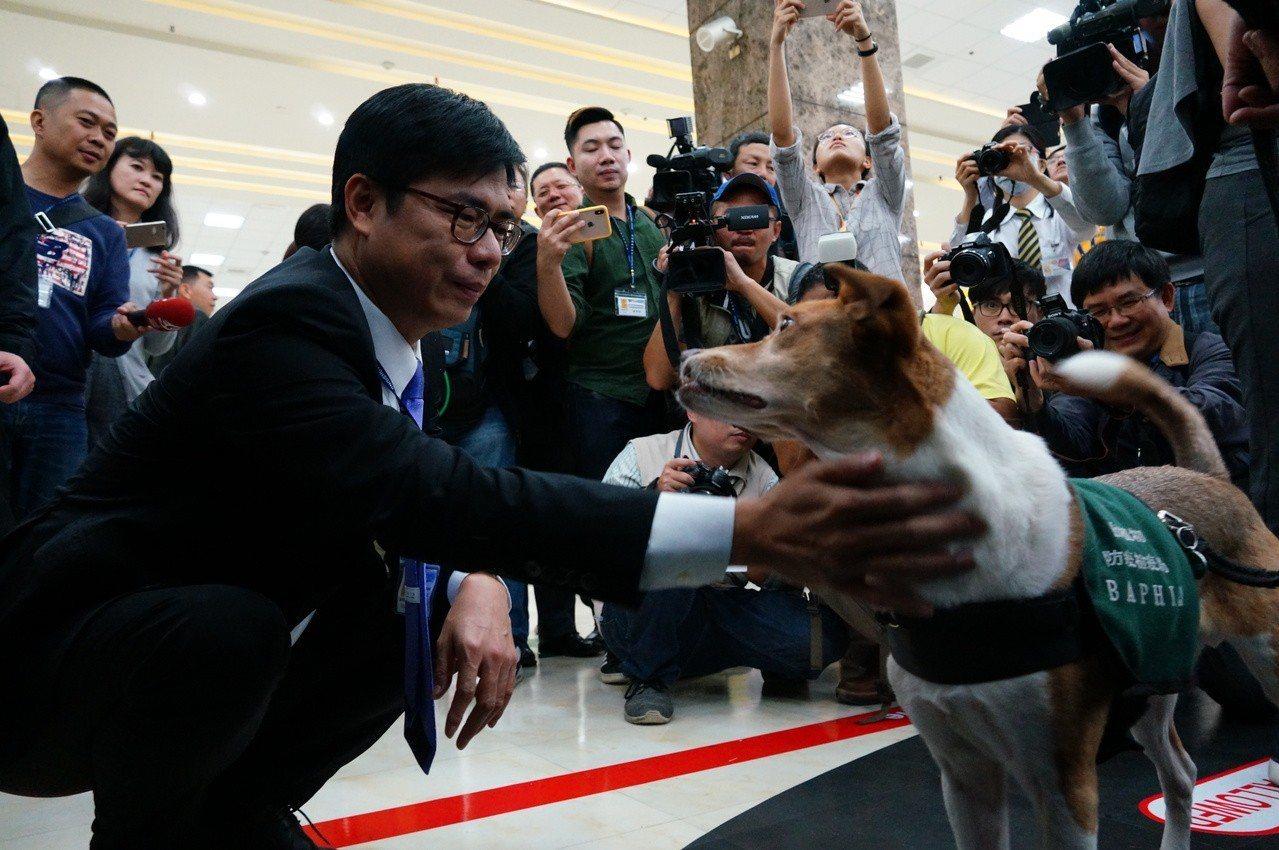 陳其邁與防疫犬互動。記者林伯驊/攝影