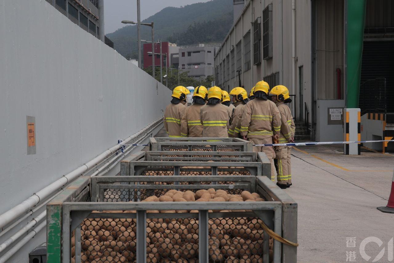 法國進口馬鈴薯發現藏有手榴彈,警察緊急封鎖廠房。圖/香港01提供