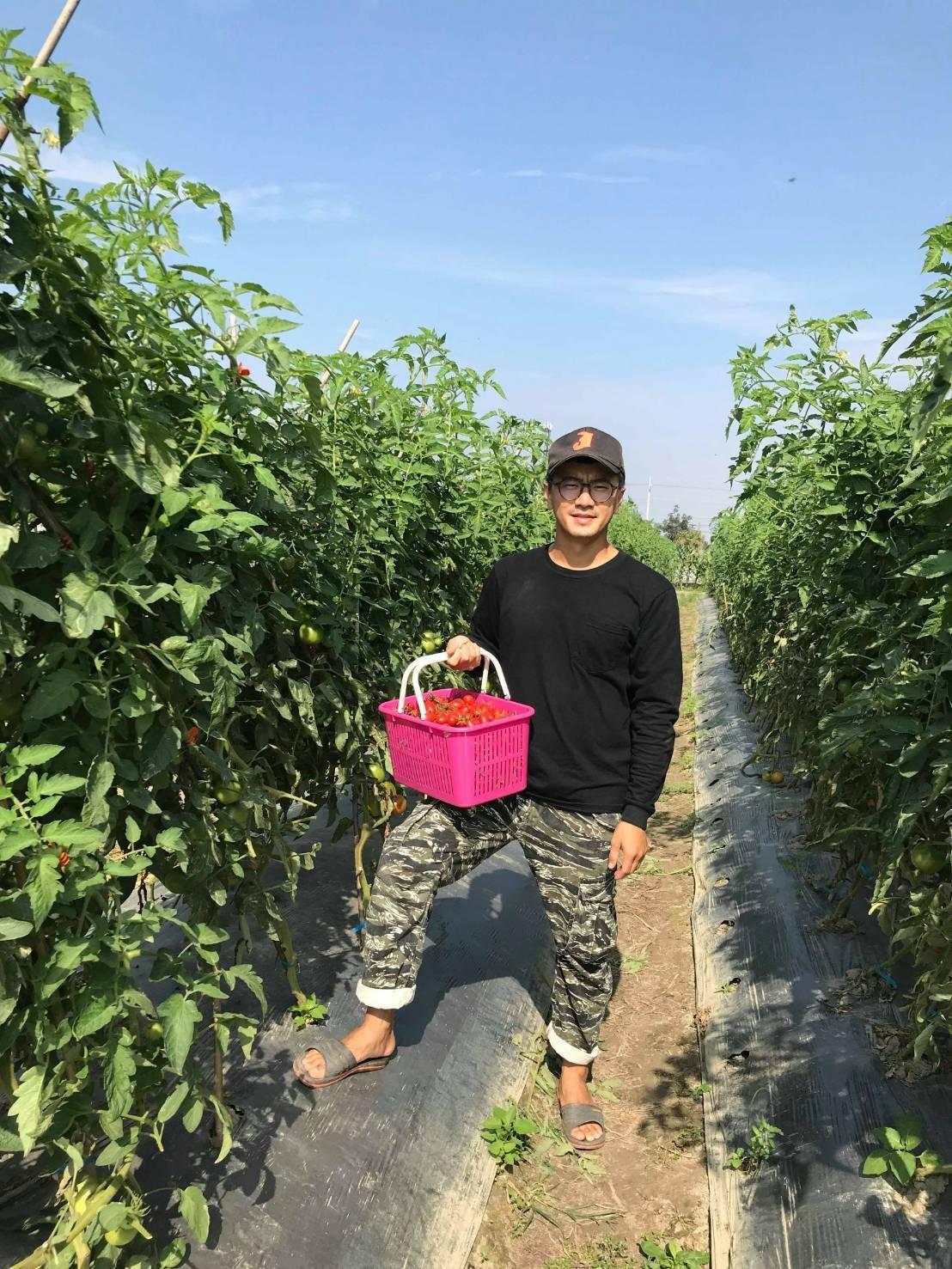 台南市下營新農人在過年期間自組農產直賣所。圖/台南市農業局提供