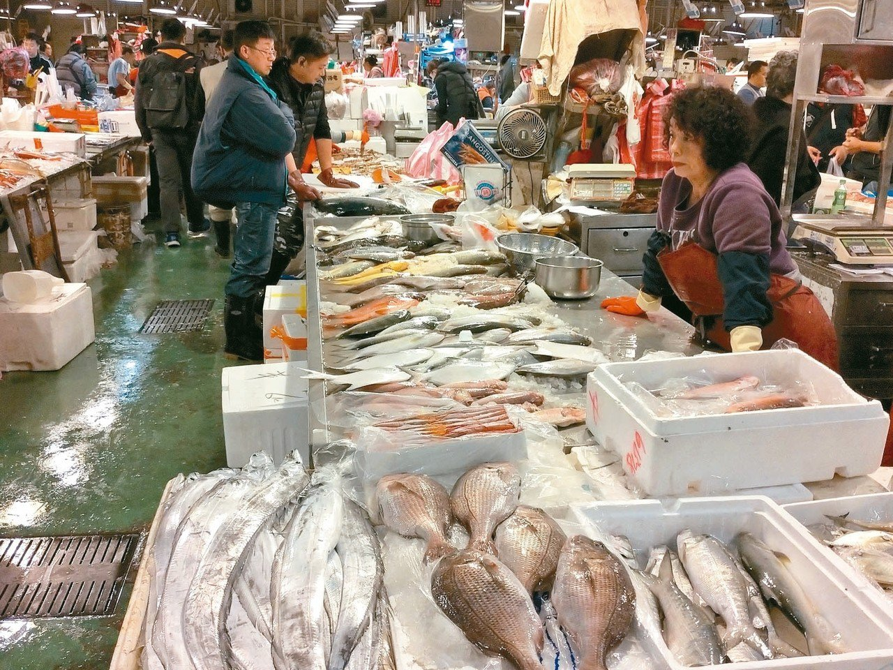 魚產品除白鯧漲價,養殖魚類價格平穩。 記者莊琇閔/攝影