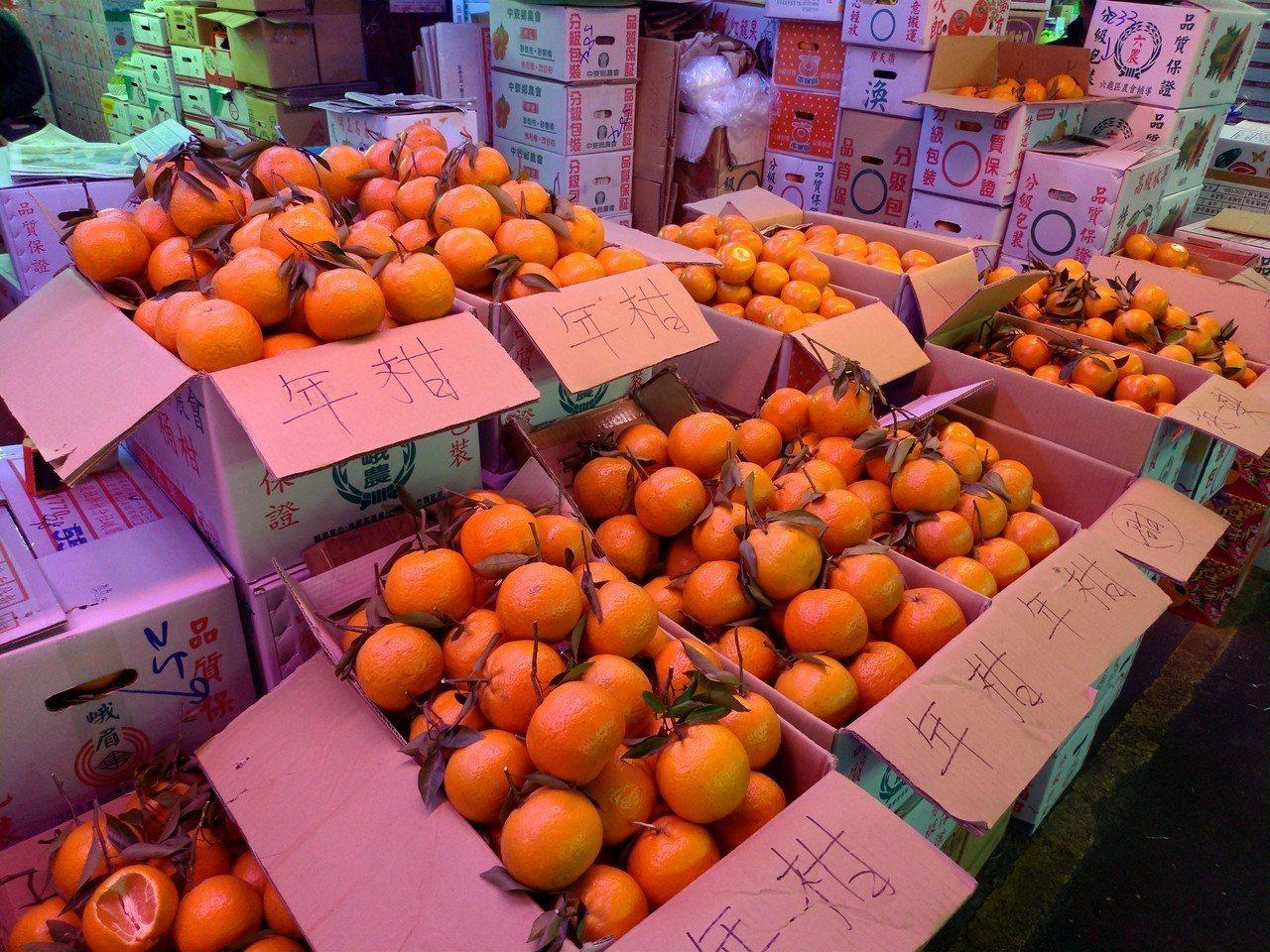 柑橘為春節大宗水果,價格因盛產持穩。 記者莊琇閔/攝影