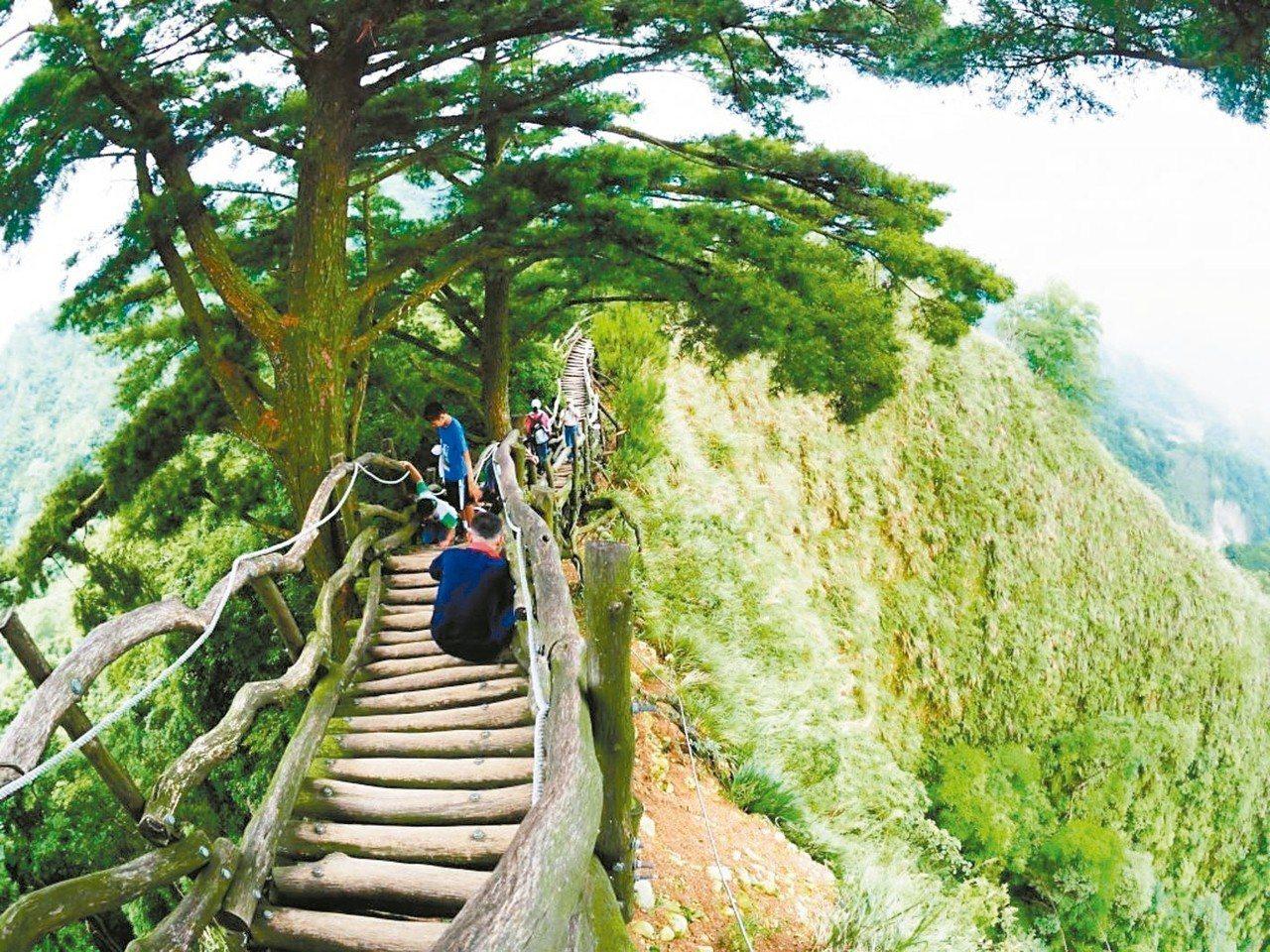 最受中部民眾喜愛的大坑登山步道,海拔不高但能立刻讓人洗卻塵囂。 中市風管所/提供