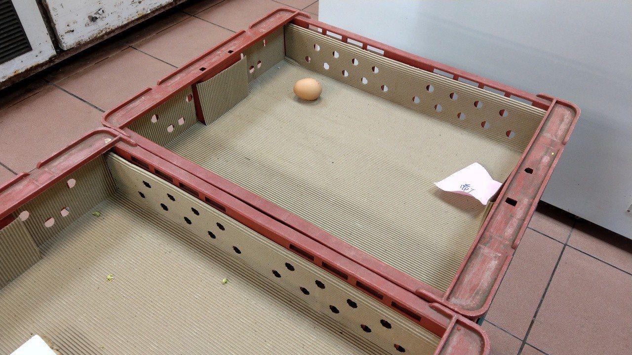 過年市場出現「雞蛋荒」,買不到價格便宜的雞蛋。記者戴永華/攝影