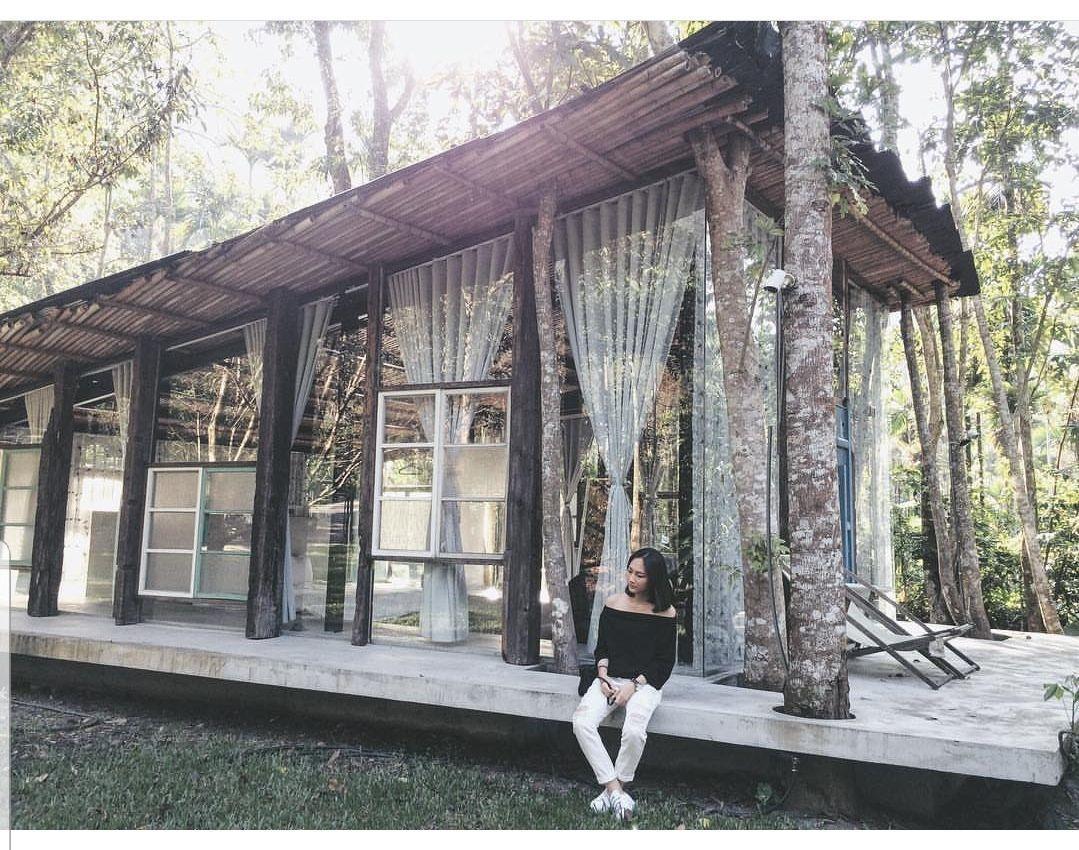 南投縣魚池鄉九樹森林將自然元素融入建築,造就出在林木間,頹廢又無違和感的自然系文...
