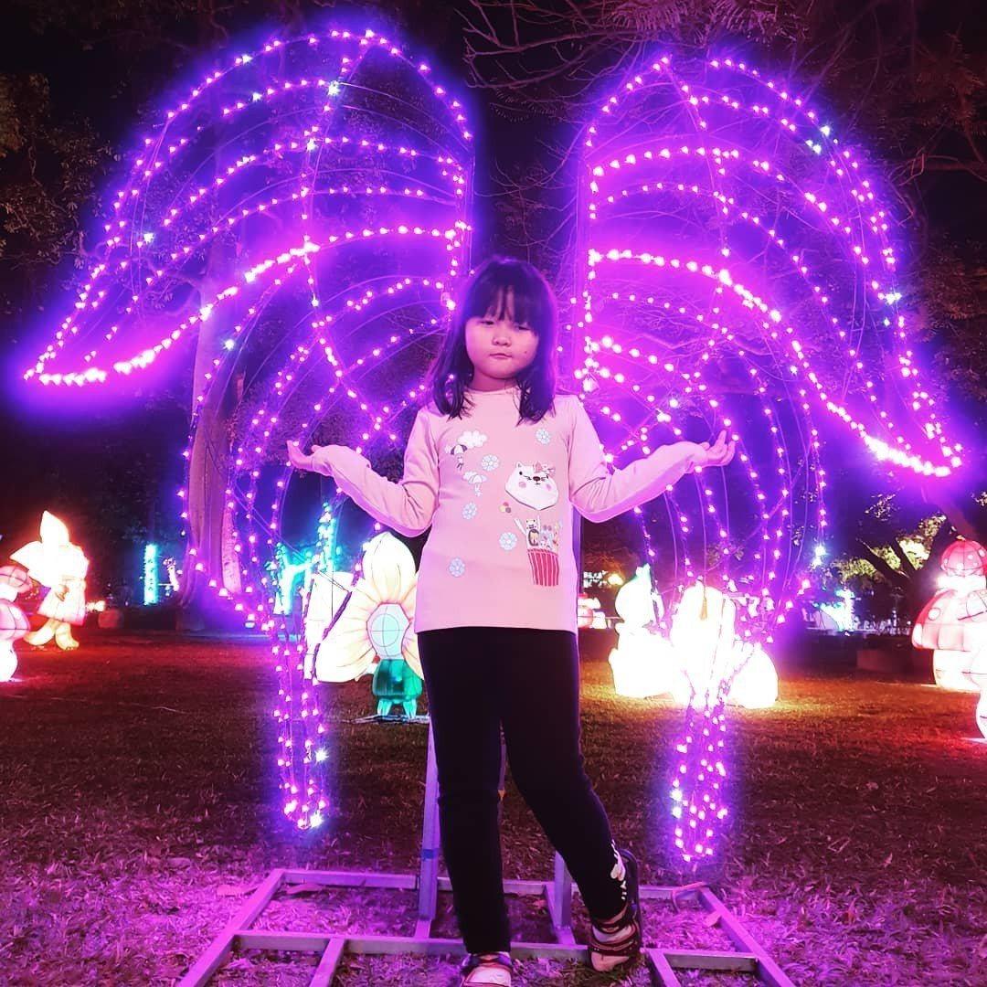 南投縣南投市燈會除有「蒂芬妮藍燈海」,還有各式花燈或光雕,超級好拍,大人、小孩都...