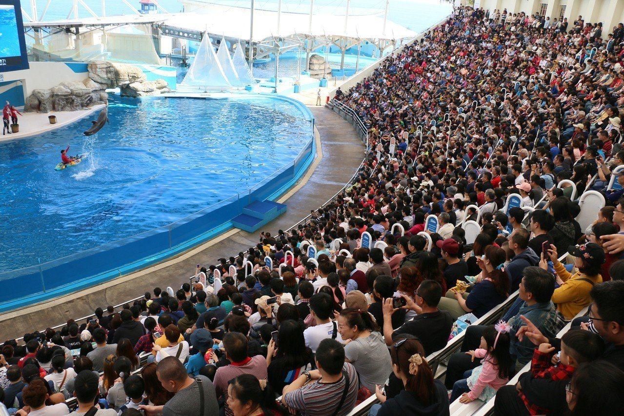 初二天氣晴朗,花蓮遠雄海洋公園今天有1萬1000人次入園。圖/海洋公園提供
