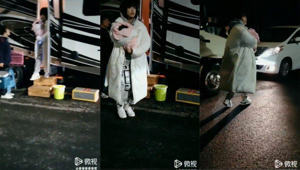 宋茜被曝光抱著寵物豬「小八」上下班。圖/擷自微博視頻