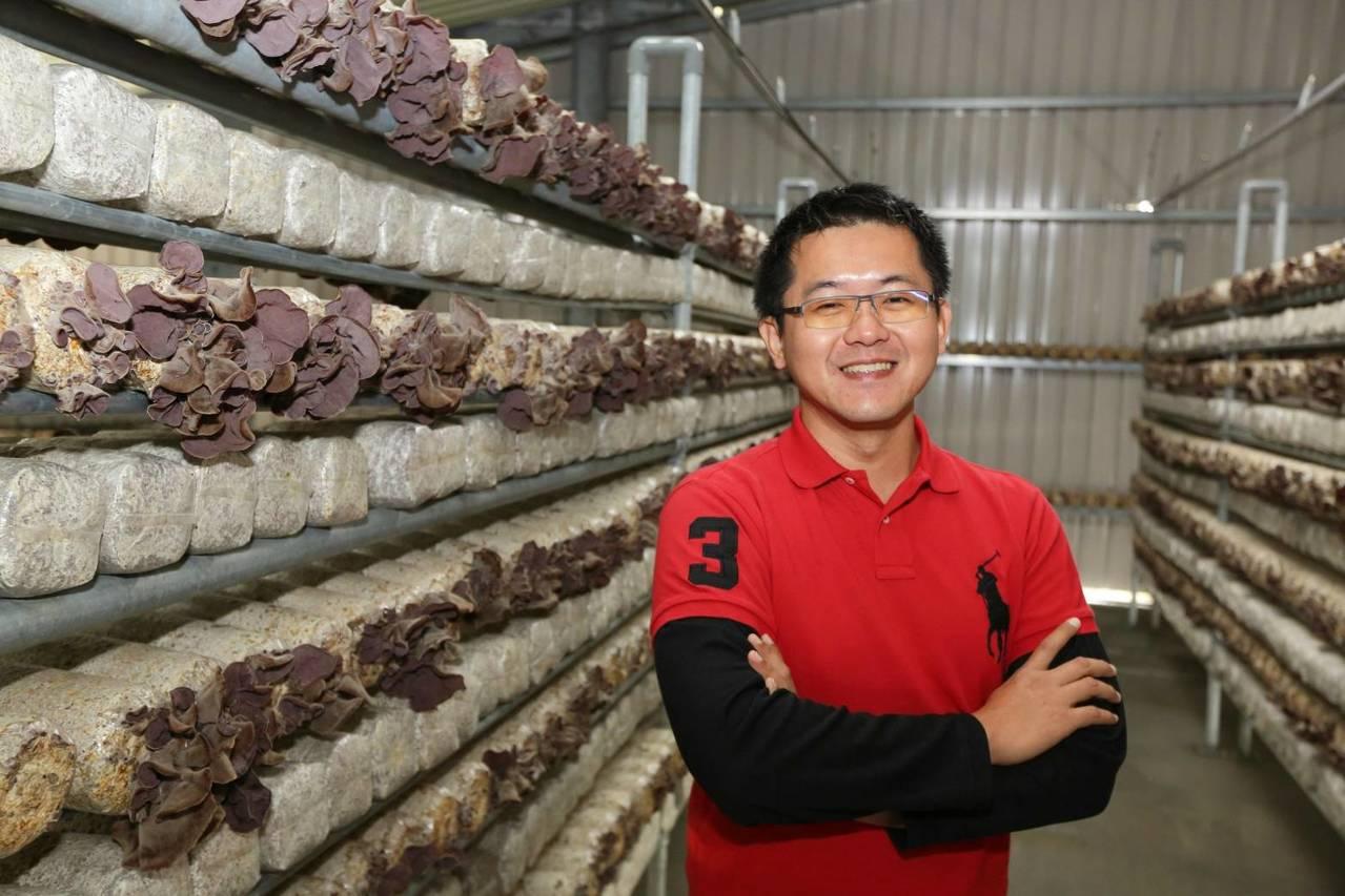台南官田區新農人黃智宏將農業結合綠能和科技,種植黑木耳有成。圖/台南市農業局提供