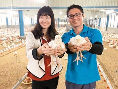 黃勝裕(右)與妹妹黃惠汝一起經營人道養雞,強調有兄弟姊妹,是父母留給孩子最好的資...