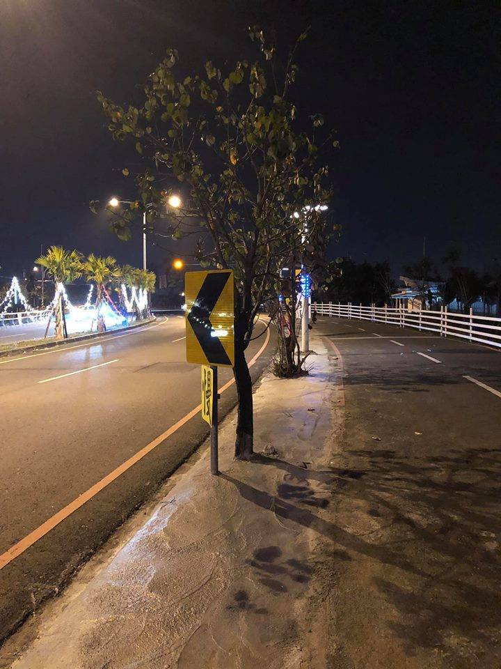 民眾在台灣燈會主燈區大鵬灣內,發現整排路樹竟以水泥灌樹根。圖/翻攝自臉書「高雄。...