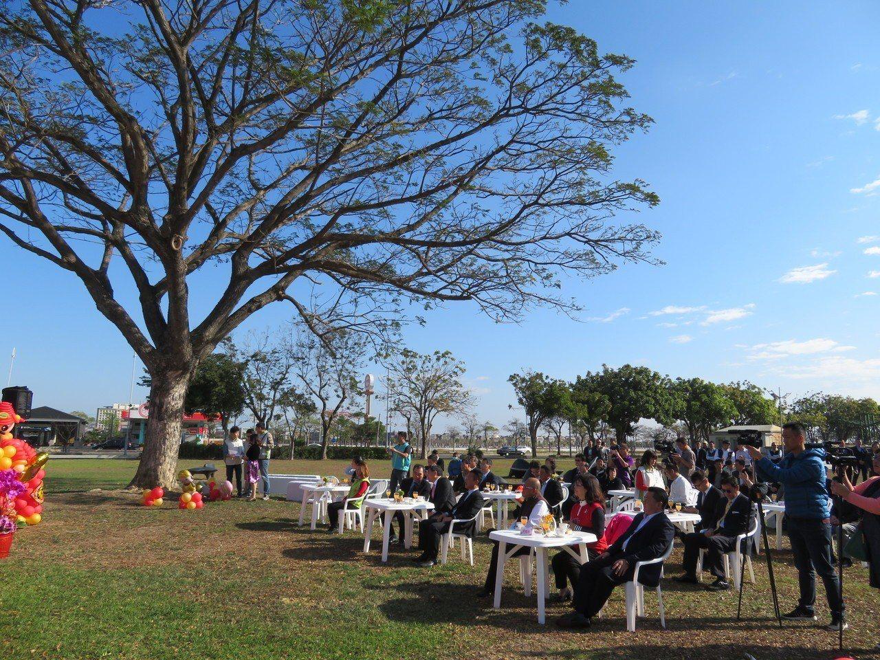 嘉義縣政府上午在縣府前草地民主廣場舉行新春團拜。記者魯永明/攝影