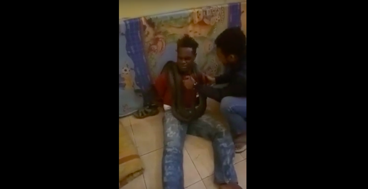 印尼警方用蛇偵訊一名竊盜犯,引發外界爭議。截自YouTube