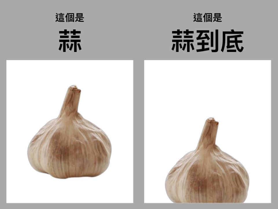 王金平今天在臉書官方粉絲專頁「台灣公道伯」,透過一張蒜頭梗圖幽默回應,表示自己「...