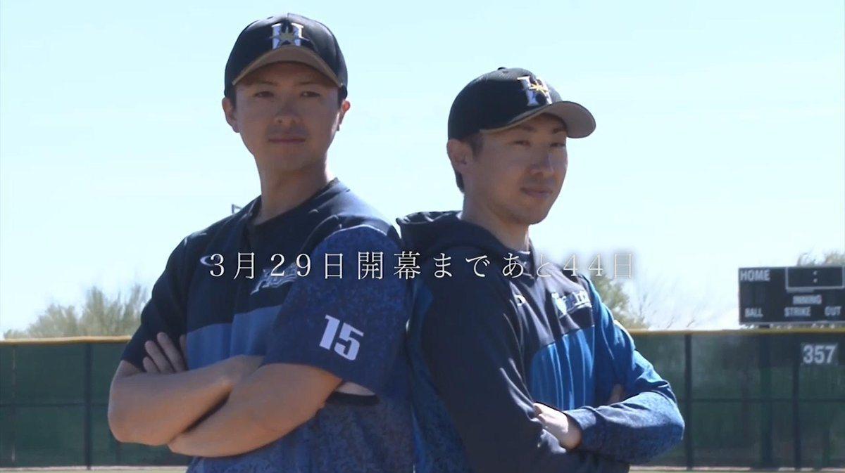 上澤直之(左)、金子弌大。 擷圖自火腿隊官方推特