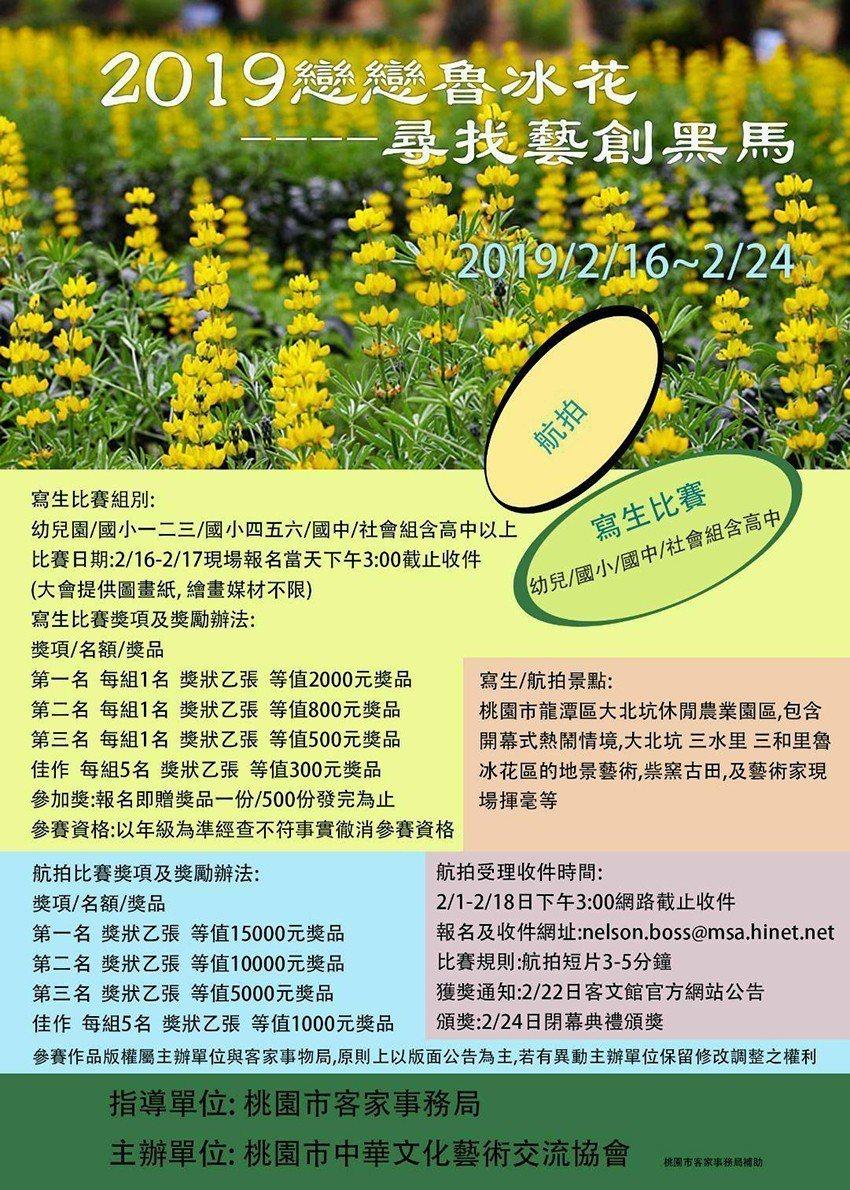 「2019戀戀魯冰花季」活動DM。 桃園市中華文化藝術交流協會/提供