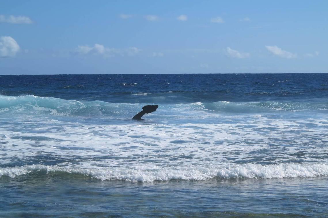 有用號的船錨,至今仍在特島海邊。 圖/法新社