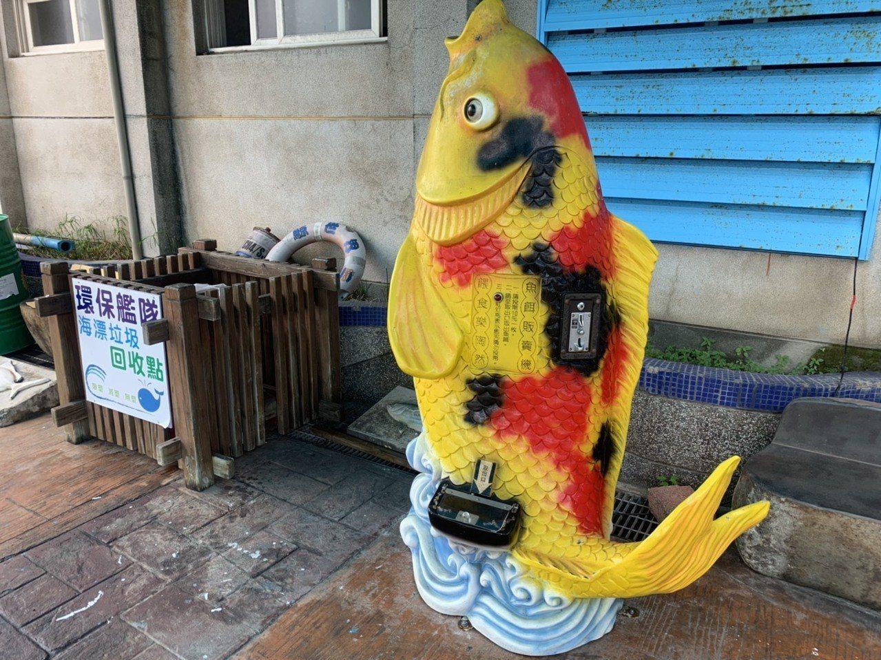 花蓮漁港賞鯨碼頭最近出現一台魚飼料販賣機,讓遊客誤以為是要餵食鯨豚之用。記者王燕...