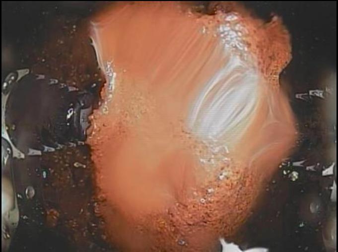 東電首度進行福島第一核電廠2號機組反應堆安全殼內熔落的核燃料碎片的碰觸調查,圖為...