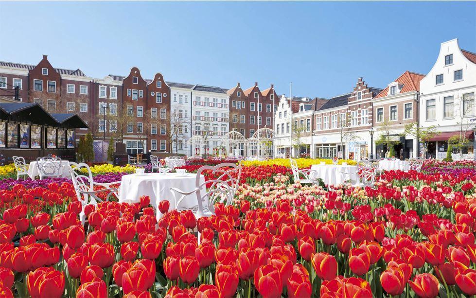 大鬱金香節於2月9日至4月14日期間舉行。圖/擷取自豪斯登堡官網