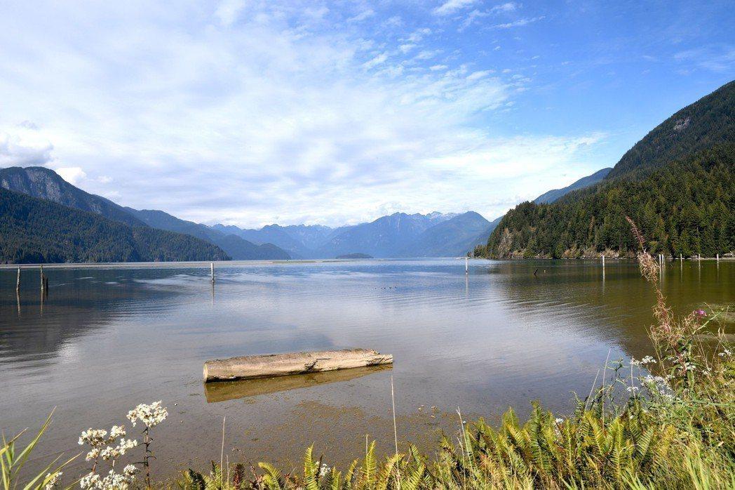 在地嚮導游田深入匹特湖野生動物園區,拍下地表最大的潮汐湖。圖/游田提供