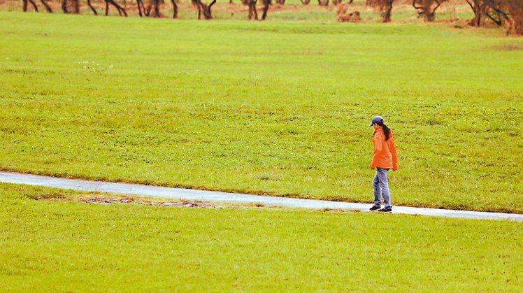 許芳宜眼中的宜蘭土得很美,有自己的個性。 記者陳立凱/攝影