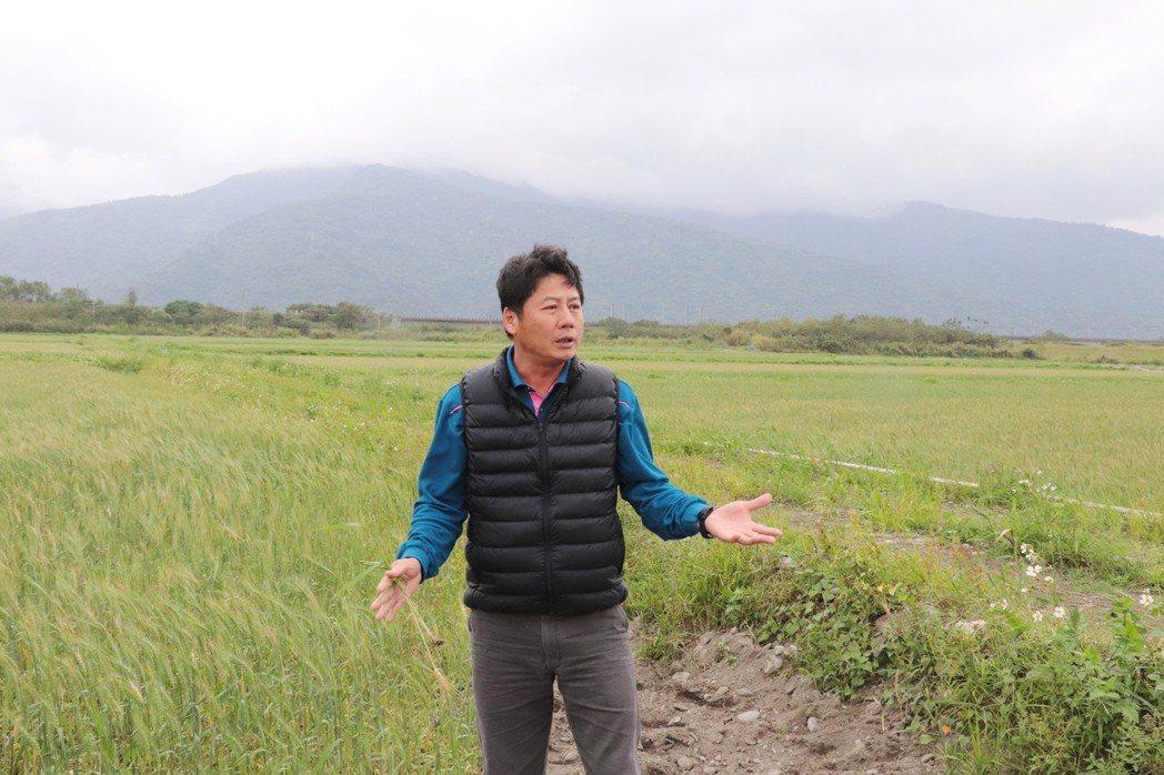 曾國旗全心投入有機農業,除了種植有機水稻外,也成立有機文旦產銷班,並在2017年...