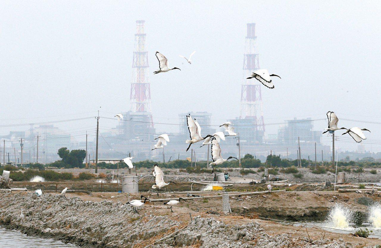台電高雄興達發電廠。 圖/聯合報系資料照片