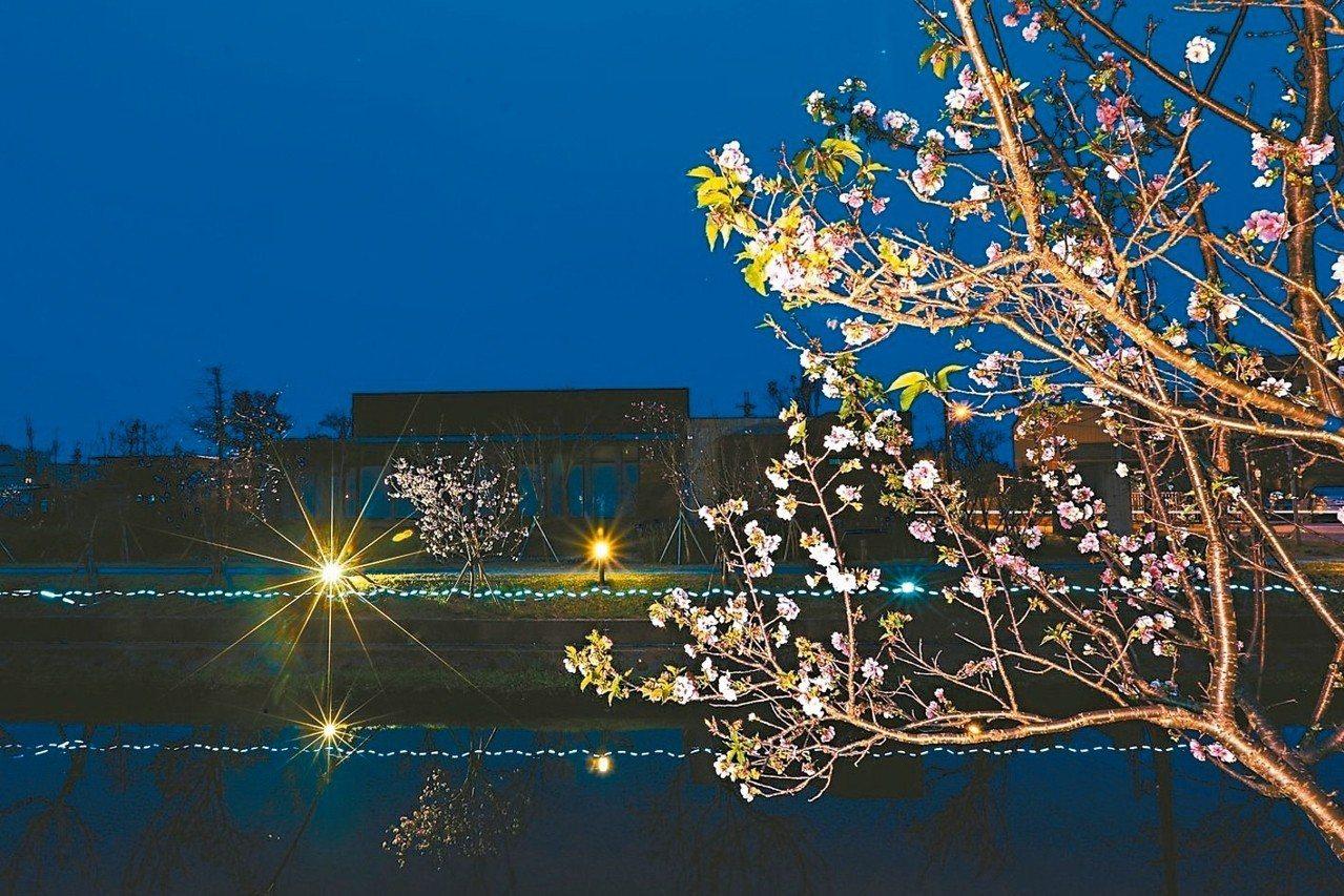 全台唯一能夠就近在平地、直線河岸欣賞「夜櫻」景點,櫻花倒影十分美麗浪漫。 林育德...
