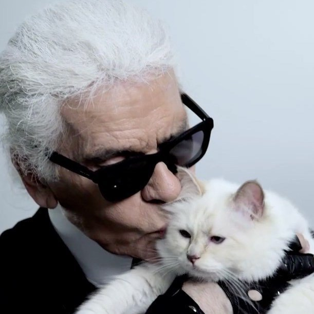 Karl Lagerfeld寵貓無極限根本最霸氣「貓奴」!Choupette有專屬女僕照顧 生活超奢華