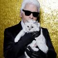 拉格斐的「邱比特」可能繼承遺產 成為世上最富有的貓