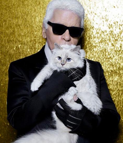 卡爾拉格斐生前對愛貓邱比特愛護有加。取自choupettesdiary IG